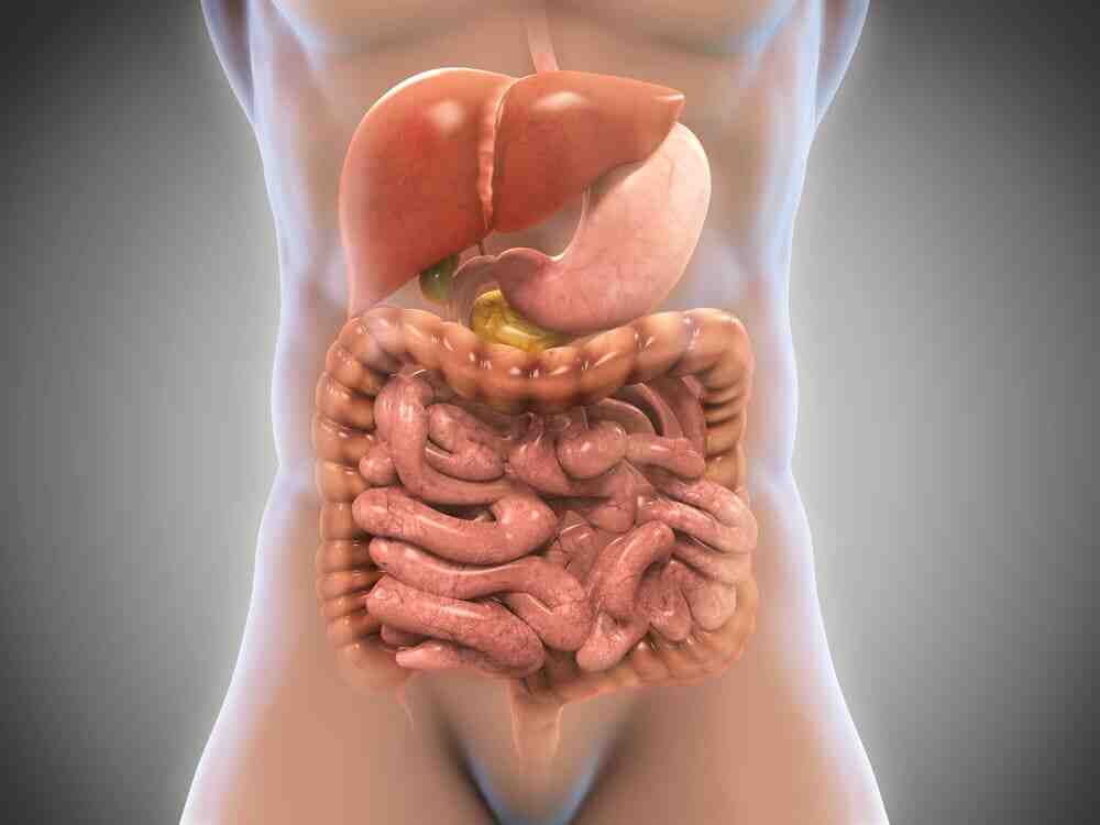 Pourquoi prendre un digestif?