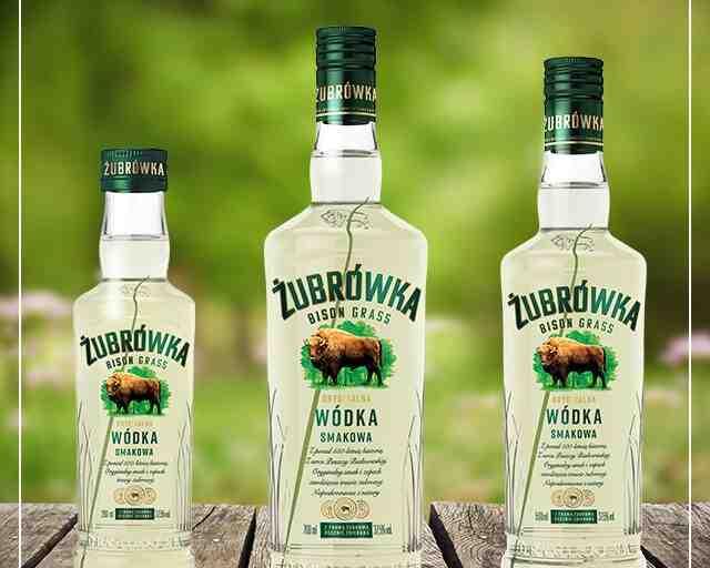 Que buvez-vous de la vodka?