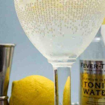 Comment bien servir un gin tonic ?
