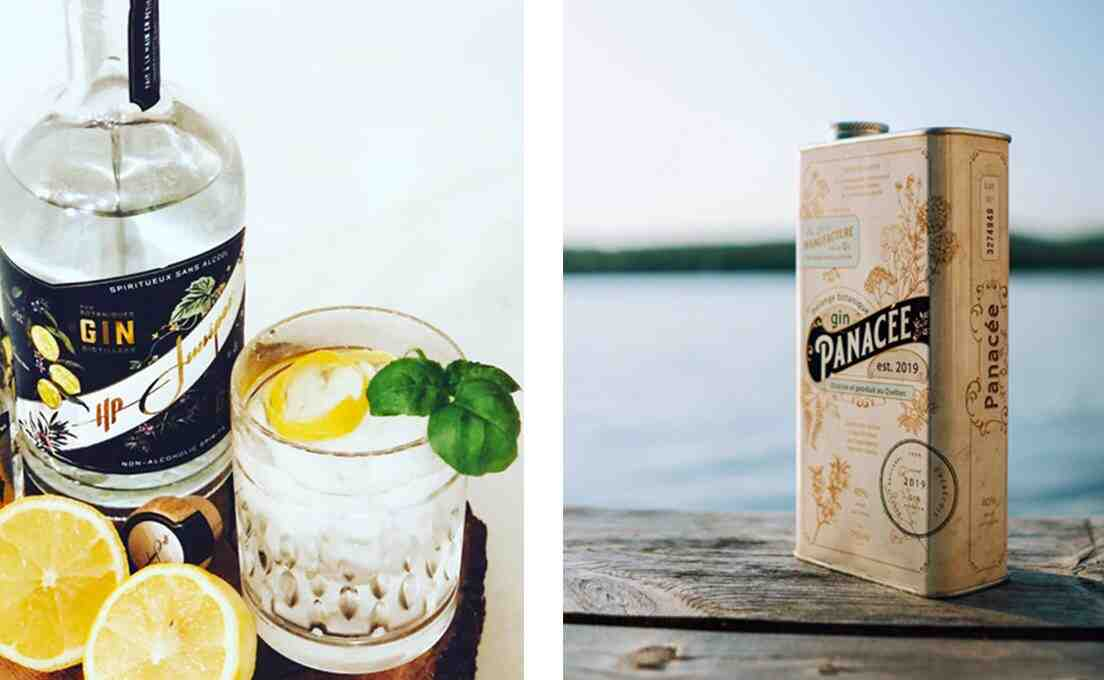 Le gin est-il beau?