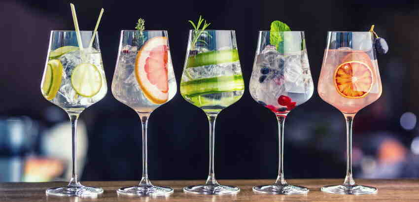 Quel Gin prendre pour Gin and Tonic?