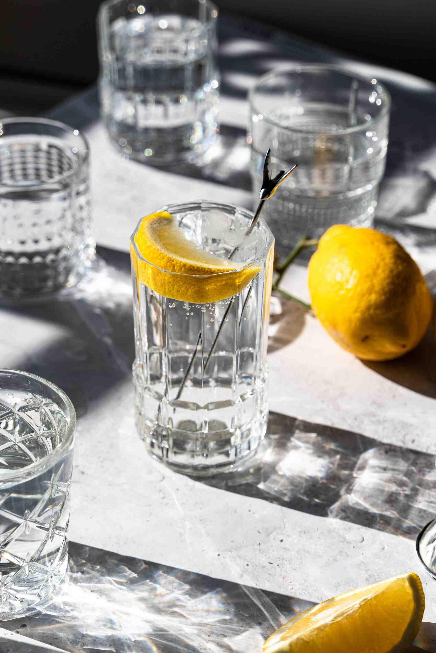 Quel tonique avec Gin Citadelle?